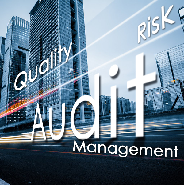 audit auditing global equation